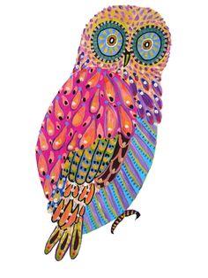another 'saucer-eyed' owl