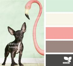 color palettes, design seeds, room colors, color pallets, bathrooms, mint, flamingo, creatur tone, babies rooms