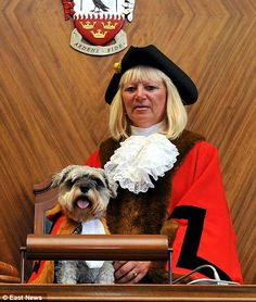 Joan Holmes, 62, was elected mayor in Brentwood, Essex, and nominated her eight-year-old Miniature Schnauzer Abi to be her official consort on official visits and trips - complete with her own miniature robes.