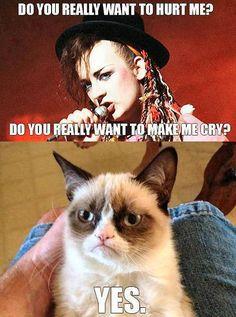 boy george, song, funni stuff, funny pics, grumpi cat, blog, culture club, grumpy cats, cat memes