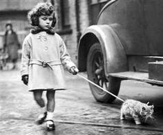 Cat on a leash, love old shots like this