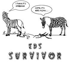 #EDS again!  #spoonie