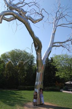 Metal tree in the sculpture garden. Saw this.