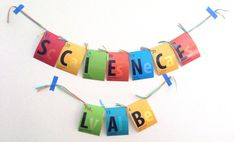8.5x11 Science Lab Banner PRINTED by BsquaredDesign on Etsy, $18.00