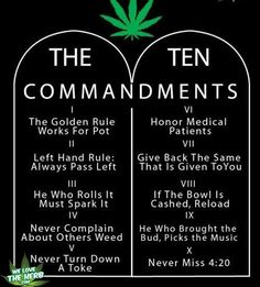 The 420 Life