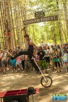Electric Forest Festival: Faeiries wander through a forest of pink illuminated trees, neon jellyfish flit in the sky, and bumping beats pulsate through your body. You're not on acid (or are you?).