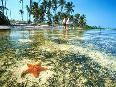 Yucatan. Its so beautiful!