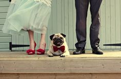 Aww, the pug's bow tie matches the bride's gorgeous red wedding shoes! Beyond cute.