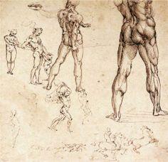 Anatomical studies - Leonardo da Vinci