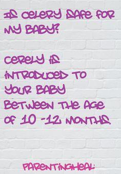 Health Benefits of Celery for Babies - ParentingHealthyBabies.com