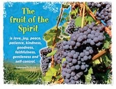 Set of Fruit of the Spirit bulletin board posters from http://www.cmresourceco.com/Fruit_of_the_Spirit_Bulletin_Board_Set_p/ns3106.htm board poster, bulletin board