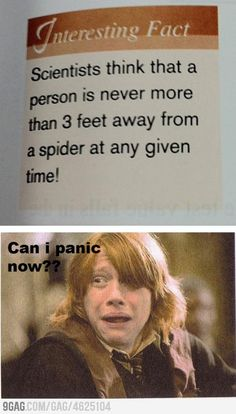 i hate spiders...