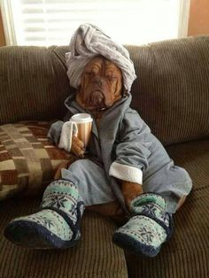oh my god this is pretty much what I look like every morning, slippers and all....