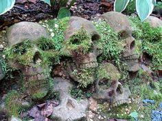 concrete. skulls. heads. moss. plants. garden.