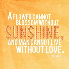 A flower cannot blossom without sunshine, and man cannot live without love. - Max Miller