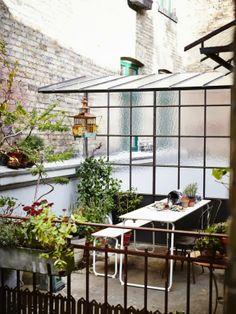 the rooftop backyard