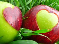 7. Apples    Calories per serving: 95Speaking of apples, however, they do make extremely healthy snacks. With no fat and low sodium and cholesterol, you…
