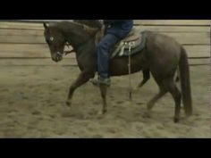 my horse while she was for sale