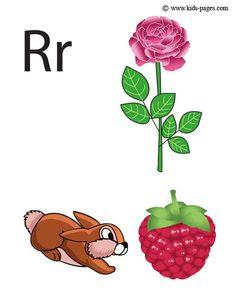 R flashcards....free alphabet cards!