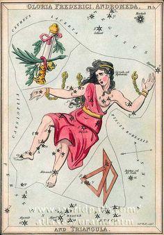 Card 5 Gloria Frederici, Andromeda and Triangula - Urania's Mirror