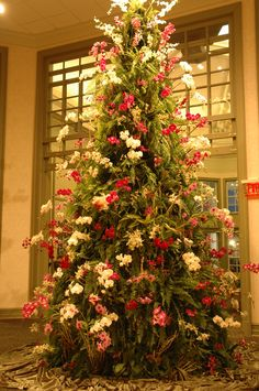orchid tree, wonder time, tall orchid, holiday imag, beauti thing