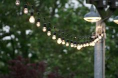 Moonlightphotography modern farmhouse, summer parties, string lights, garden parties, garden party lighting, container gardening, picnic, parti light, party lights