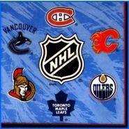 First Birthday - NHL Hockey themed