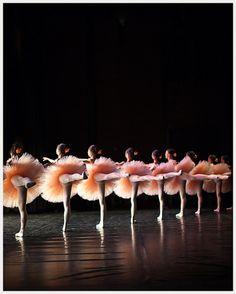 corps de ballet...