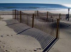 The winter sun creates crisp shadows on the sand and brilliant sparkles on the crest of a wave.