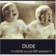 Dude, I'm just joking, you're not adopted!