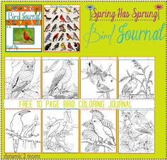 Free Bird Journal & Coloring pages