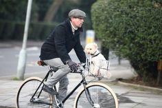 Ewan McGregor with his adorable bike and dog