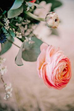Ranunculus | Irina Klimova Photography | see more on: http://burnettsboards.com/2014/09/beauty-flower-exquisite-bridal-editorial/