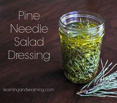 Pine needle salad dr