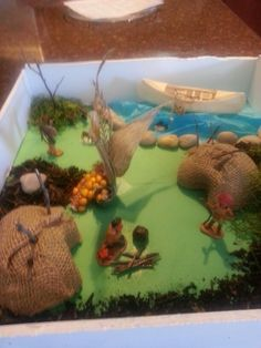 Shawnee indian tribe diorama fourth grade project