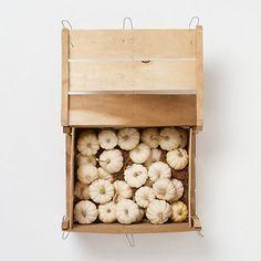 Terrain Mini White Pumpkin Crate #shopterrain