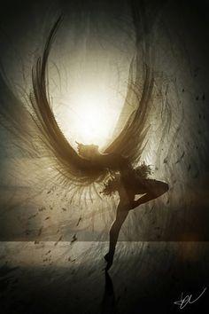 in fairies!