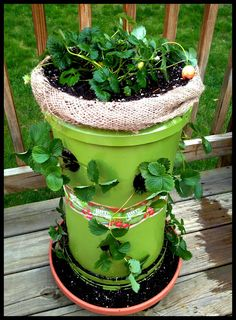 Make your own strawberry tower!