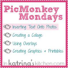 PicMonkey Tutorial Inserting Text Onto Photos from www.inkatrinaskitchen.com