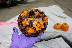Lace spray painted on pumpkin! Enrichment craft?! How cool does that look???!!!