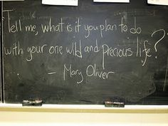Mary Oliver, Inspiration