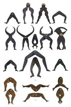 Leg-shaped calipers...