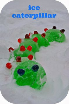 Ice Caterpillar (from Twig and Toadstool)