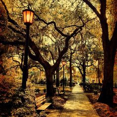 A walk in the park... Perfect.