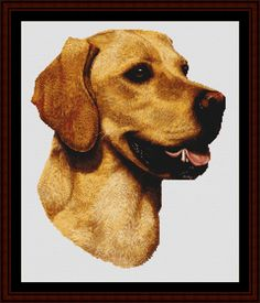 Yellow Labrador - Cross Stitch Collectibles fine art counted cross stitch pattern