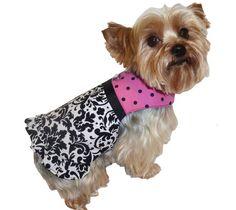 E D F C Dd A on Tutorial Dog Harness Pattern