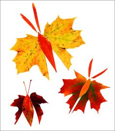 Cut color prints of leaves into butterflies. PDF download available. #artprojectsforkids #fall #leaves