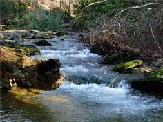 Hiking the Pinnacle and Tucquan Glen • Insider Tip: Be prepared to get your shoes wet!