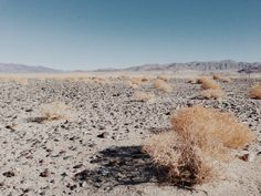 It was / Death Valley