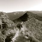 VisitArizona.com |  July's photo contest winner, James Bakalar. Image of South Kaibab Trail, Grand Canyon.
